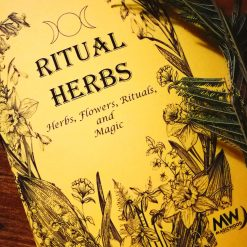Witchcraft Herbs Starter kit- TheMagicWood.com